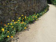 fleurissement_murs-61be1eb9