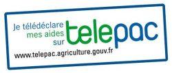 logo-telepac
