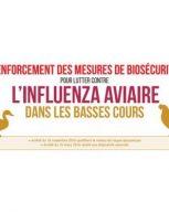 Influenza aviaire H5N8 : des mesures dans le Maine-et-Loire